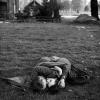 Гайд-парк, лондон, 1944 р