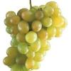 Яка користь від винограду?