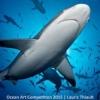 Кращі підводні фотографії 2015 року
