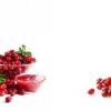 Морс з брусниці: користь і шкода