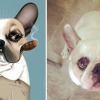 Портрети домашніх тварин, створені за описами їх власників