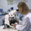 Причини підвищення рівня лейкоцитів в мазку.