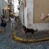 Подорож в пуерто-рико