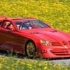 Найдорожчий mercedes-benz в світі (2011 рік).