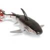 Shark bull - залізна акула