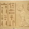 Статус котів в єгипті
