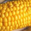 Варена кукурудза: користь і шкода